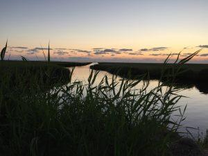 Vadehavshostel - natur - Brøns